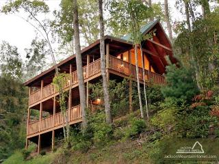 Big Sky Cabin   Hot Tub Pool Access King Beds View Gaming  Free Nights, Gatlinburg
