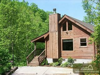 Fawn Cabin  Hot Tub Private Jacuzzi Pet Friendly Fireplace Free Nights, Gatlinburg