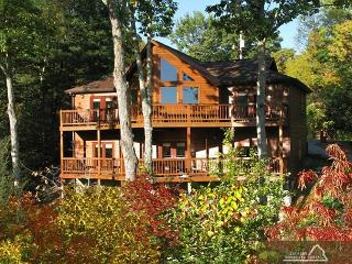 Silver Fox Lodge   Near Downtown Private Game Room Hot Tub Free Nights, Gatlinburg