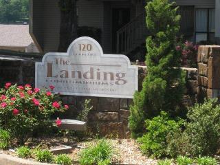 Landing 8A, Hot Springs