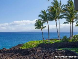 Amazing Condo with 2 BR-2 BA in Waikoloa (W5-HALII 15A)