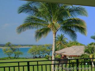Super 2 Bedroom-3 Bathroom Condo in Waikoloa (W4-KOLEA 6B)
