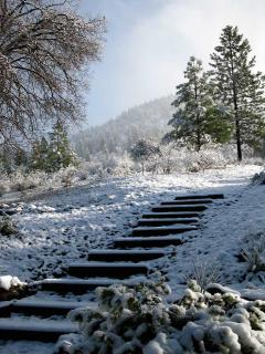 stairs behind fivespot bring you up to a snowy meadow...