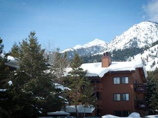 2bd/2ba Sleeping Indian W 14, Teton Village