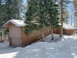 3bd/3ba Baily House, Teton Village