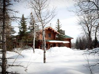 4.5bd/4ba Macker's Cabin, Wilson