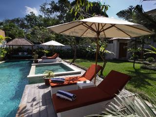 Modern Bali 4 Bedroom Villa 5 min to best of Seminyak