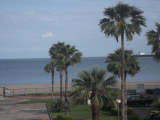 Corpus Christi Condo on the Beach!
