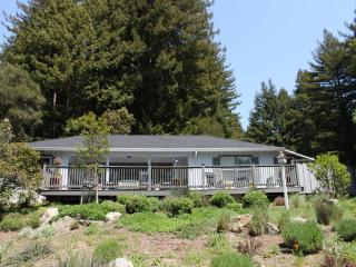 Front of cottage against redwoods