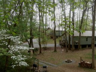 Hidden Cottages, Johnson City