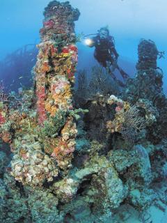 Looe Key Reef 3 miles away