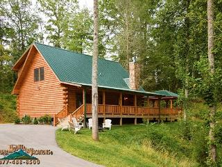 Bear's Way Log Cabin, Bryson City