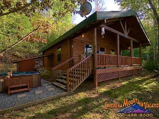 Good Life Cabin 2, Bryson City