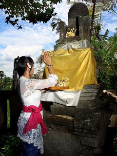 Balinese daily offering routine