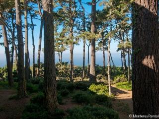 Ocean Pines #30, Pebble Beach