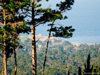 Ocean Pines #50, Pebble Beach