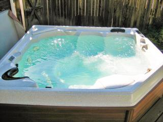 Large premium hot tub in a private back yard with enough room for 5 adults
