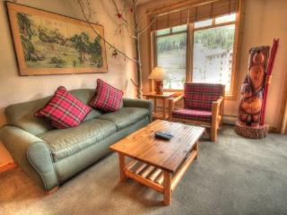 TM525 Tucker Mtn Lodge 2BR 2BA - Center Village, Copper Mountain