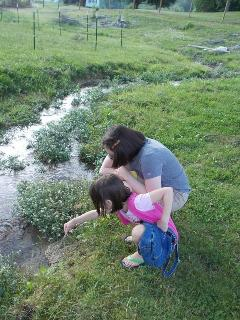 Small Creek at the vacation home with children playing in the creek