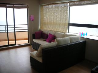 Great Apartment in Vina del Mar, Valparaiso Chile