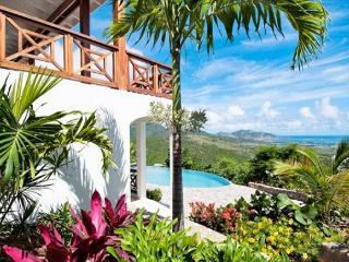 New Caribbean style villa with large private infinity pool and stunning views, St. Maarten
