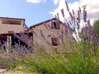 Seaside Istrian Rural Stone Villa 'Besida'