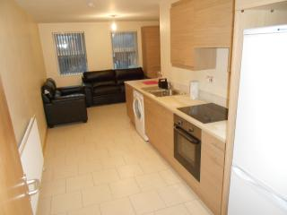 University Lodge Apartments~Queens Quarter Belfast