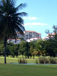 Golf Course and VIllas View