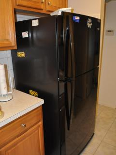 Large Fridge with Ice Maker
