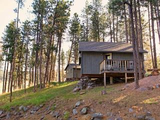 Affordable Cabin Nestled in Pines by Mt Rushmore, Hill City