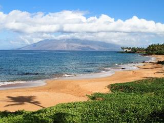 MAKENA SURF RESORT, #E-206^, Wailea