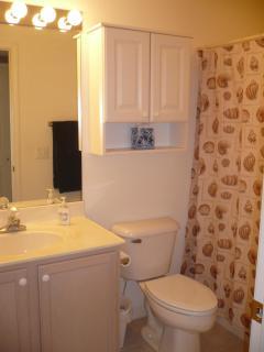 Common bathroom tub/shower
