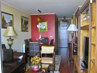 Riverview 2BD/2BA. Finearts dispositivo, Parque & 2 celulares!, Santiago