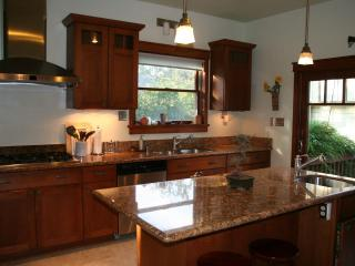 Kitchen Island, Stove and Sink