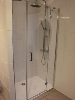Downstairs en suite shower