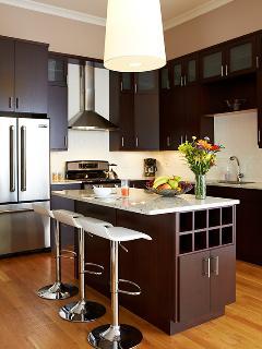 Open Gourmet kitchen - Chicago vacation rental