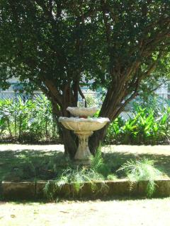 Fountain in back yard
