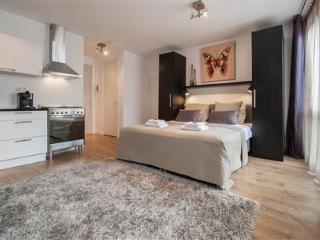 Sarphatipark Apartment 4, Amsterdam