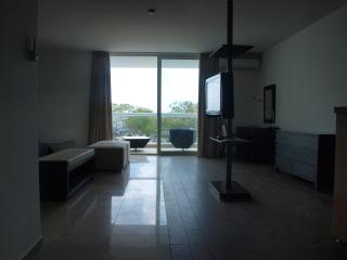 Large Studio in the heart of Playa Blanca, Farallon