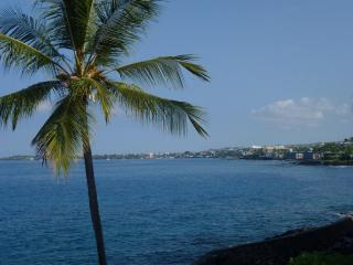 OCEANFRONT /  5 Star One of Best in the complex, Kailua-Kona