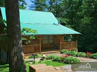 Nature's Hideaway   Privacy  Hot Tub  Gaming  Jetted Tub   Free Nights, Gatlinburg