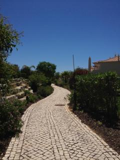 The Path leading to the pool