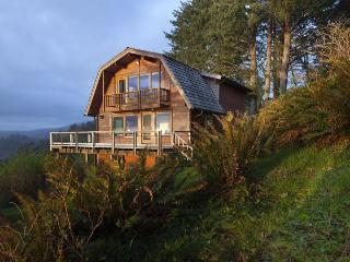 Amazing, dog-friendly cabin w/ exceptional ocean views & entertainment!, Neskowin
