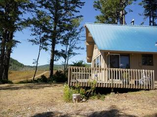 Peaceful & dog-friendly cabin with ocean views, sleeps 4!, Netarts