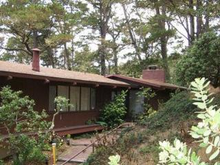 Carmel Retreat, Ocean Views, 30 DAY RENTAL