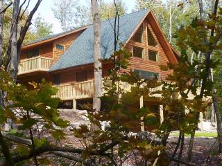Rocky River Chalet - On Ausable River!, Wilmington