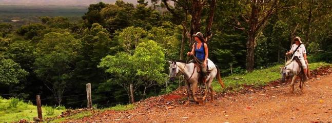 Rosie the 'muy Pura Vida' horseback riding guide can take you on a beautiful ride into the mountains