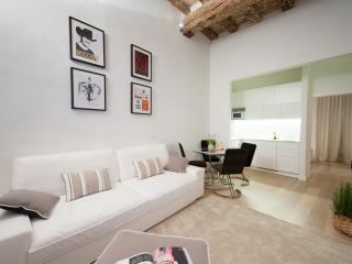 Charming 1 Bedroom Luxury Apartment Rental in Florence