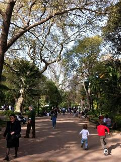 Lisbon´s parks are beautiful. This is Jardim da Estrela, next to the Basilica. Take the tram or walk