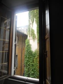 view on via dei Coronari
